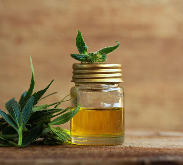 The benefits, uses and risks of taking CBD oil
