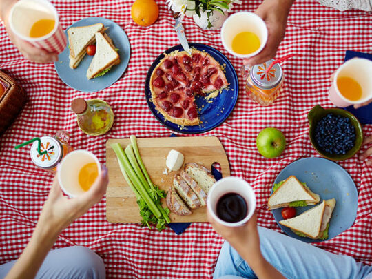 Things to keep in mind for packing the perfect picnic