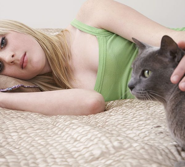 Cat care: what you need to know as a new pet owner