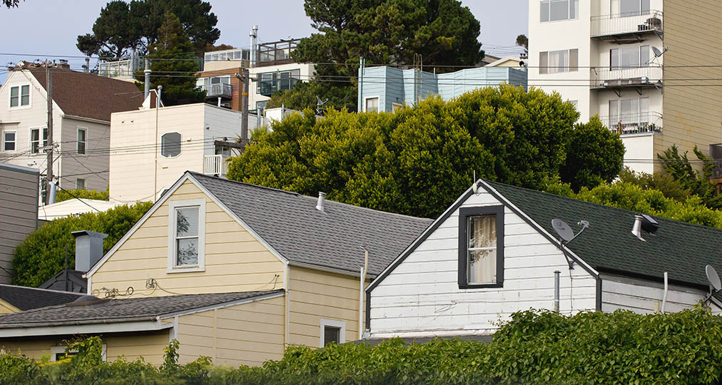 houses and trees in san francisco