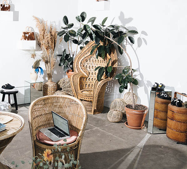 What are the benefits of having plants in your house?