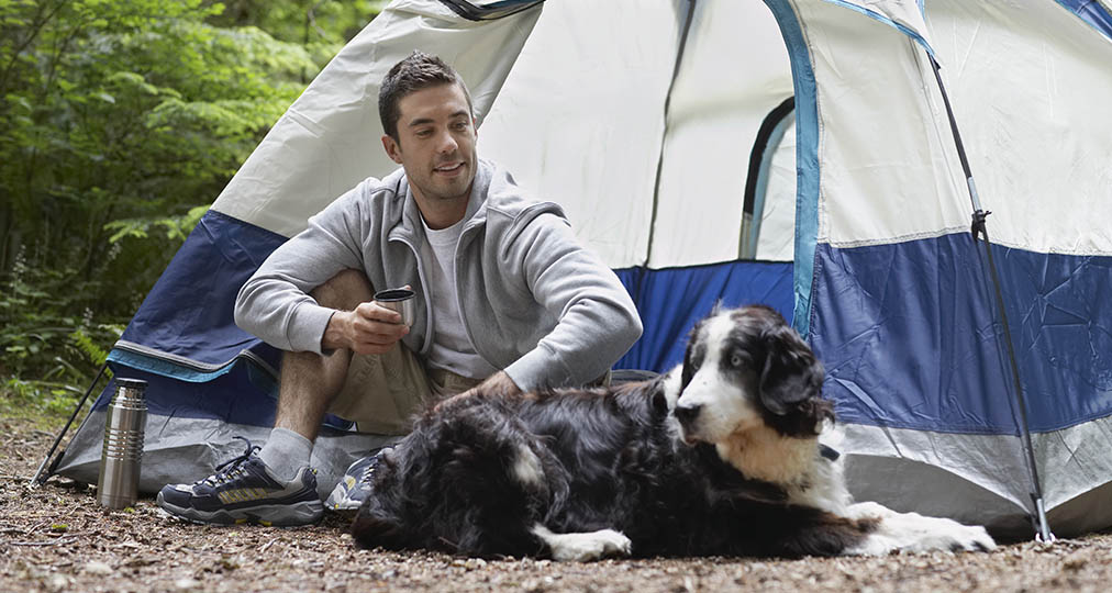 man and his dog camping