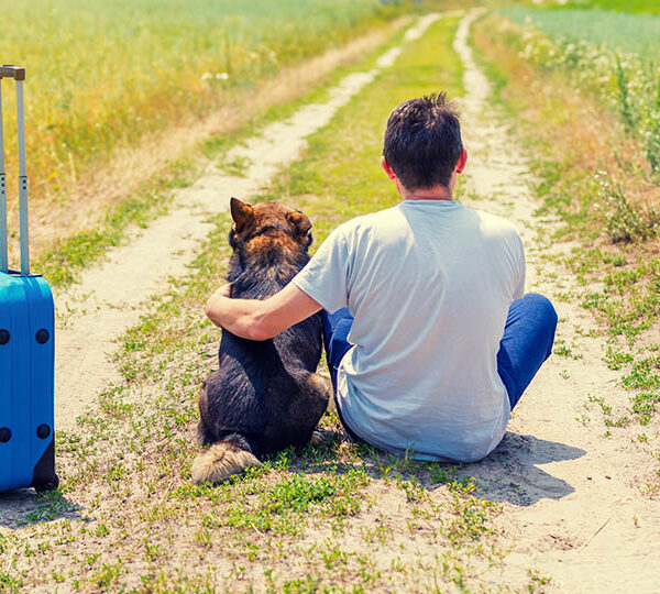 Factors to consider when traveling with your dog