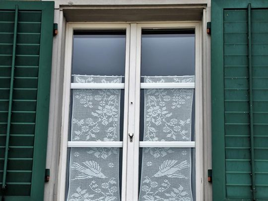 Why outdoor shutters are an essential decor item?