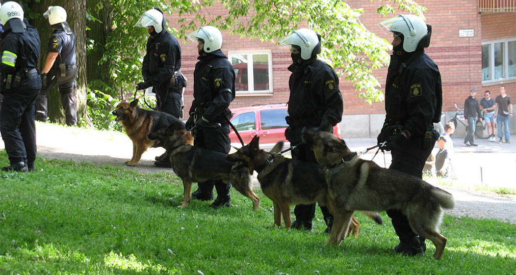 police dogs mission