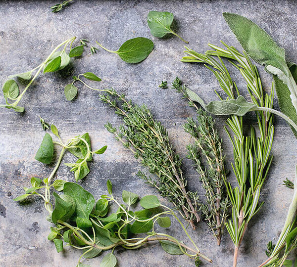 World's healthiest herbs and spices