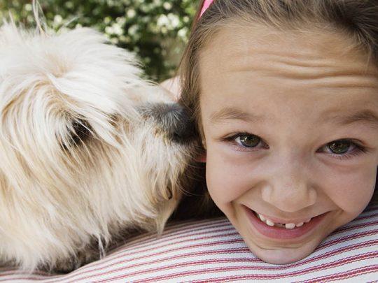 Amazing & fun summer activities for pets & kids